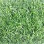 Искусственная трава eco green 20 мм